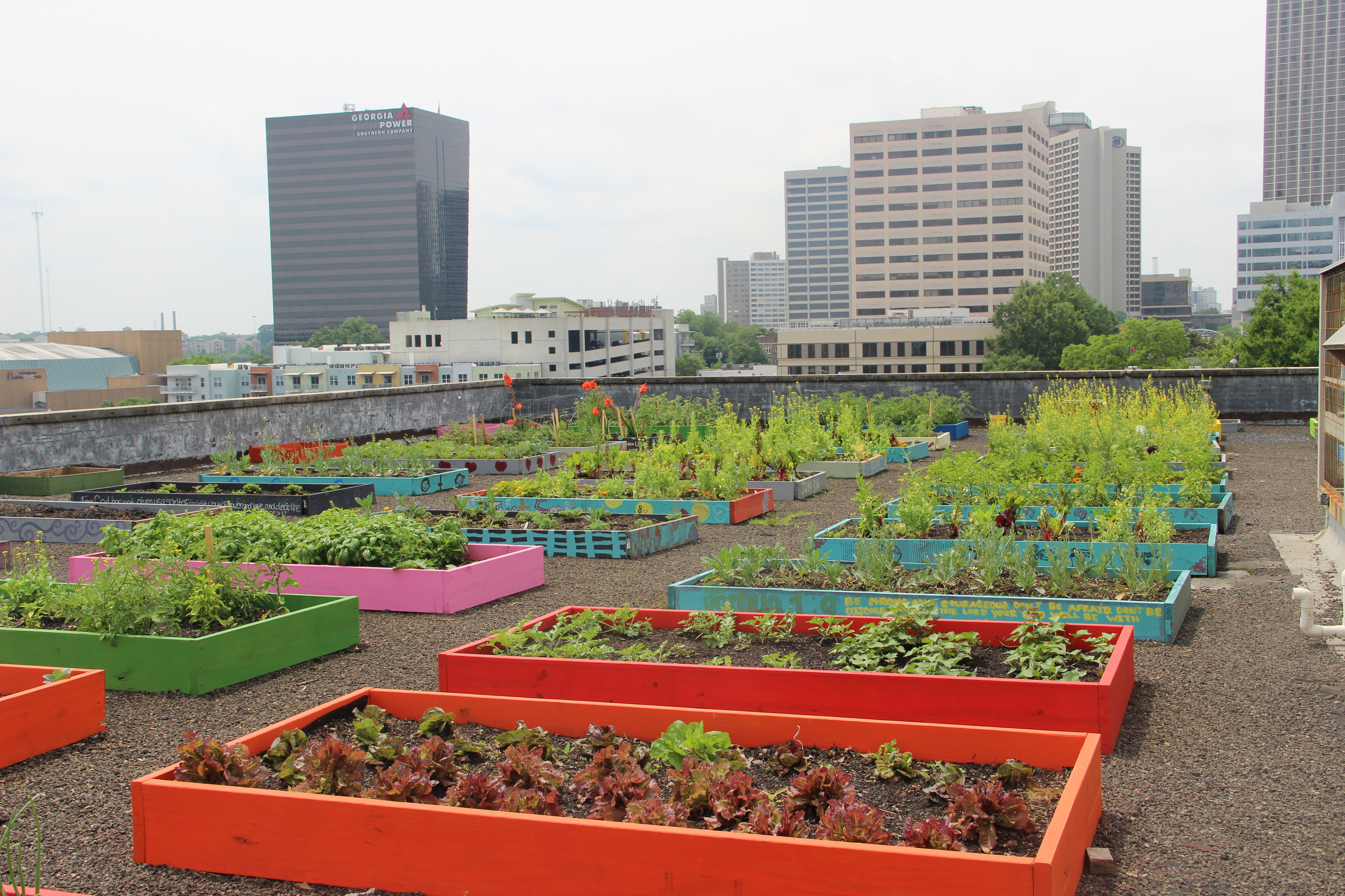 Rooftop Garden roof top gardening – dealing with the three w's - garden & greenhouse