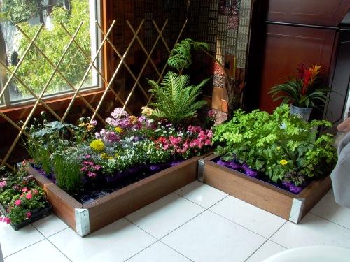 Indoor gardening 101 garden greenhouse for Indoor vegetable garden