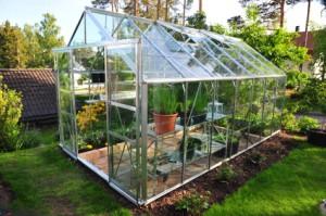 starter greenhouse