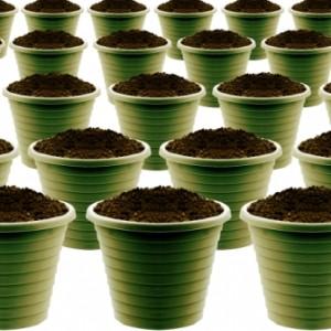 ContainerGarden Do Not Use Garden Soil