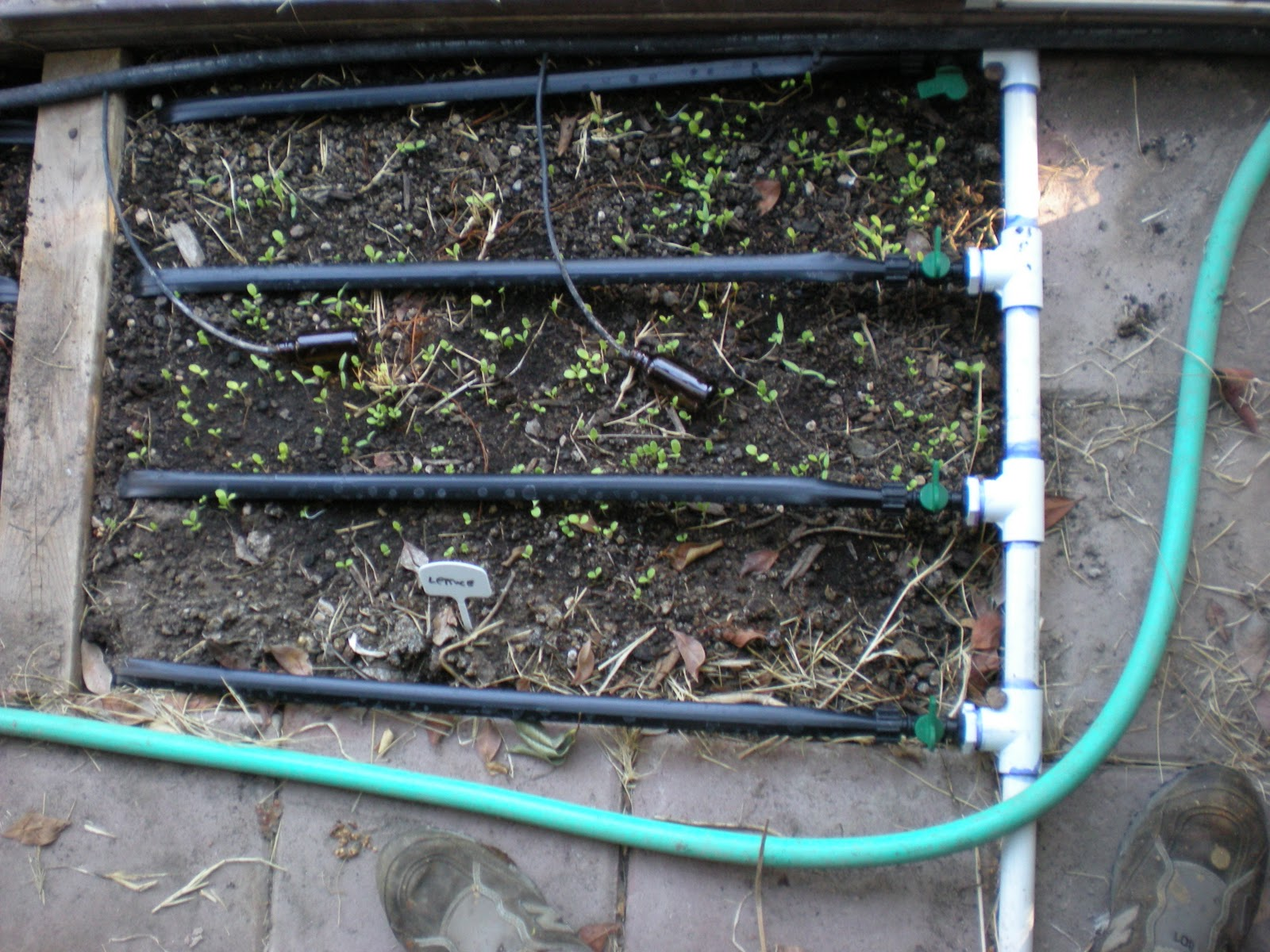 how to make a drip irrigation system for an orchard