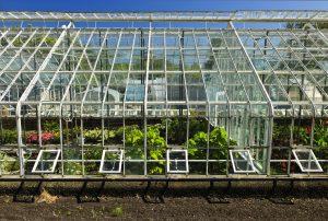 glass-greenhouse