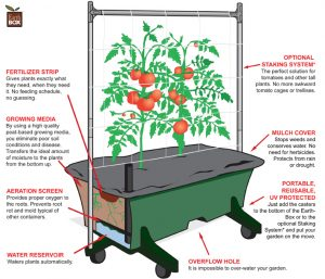 modern-sub-irrigated-planter-illustration-earthbox