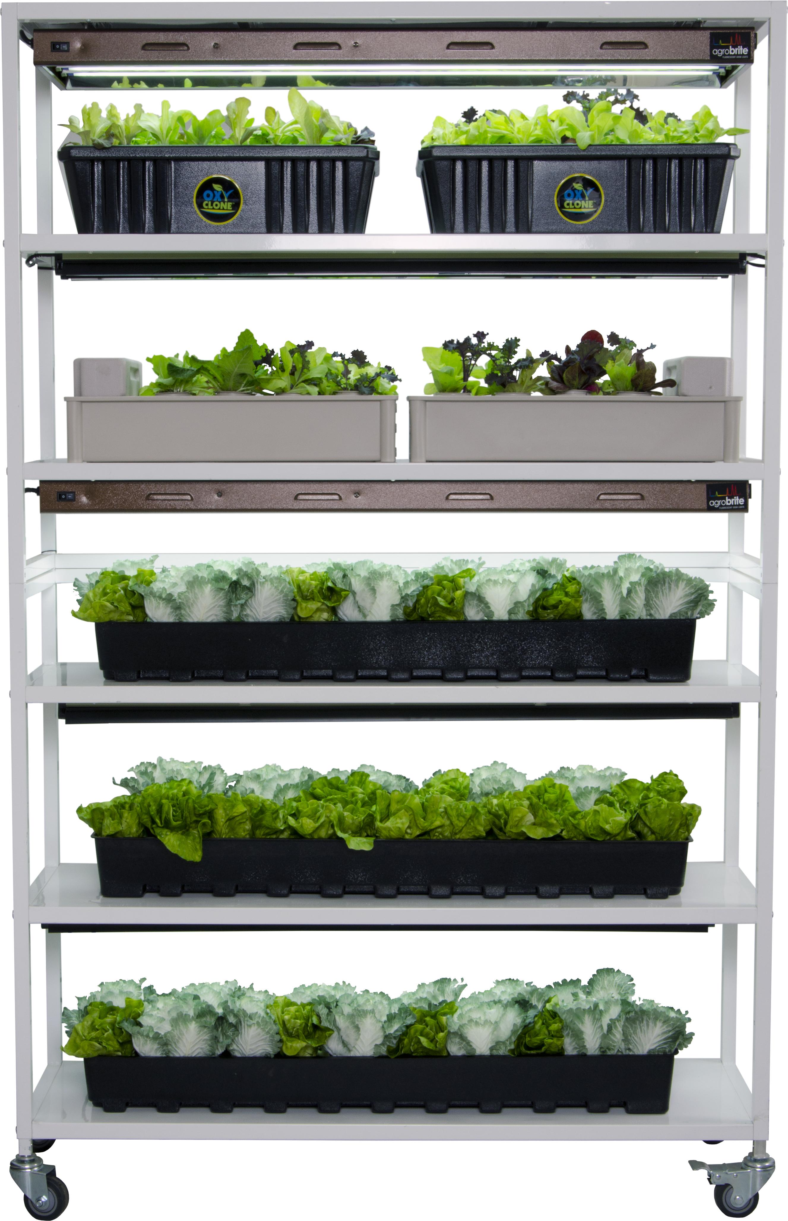 Vertical Grow Shelf System Garden Amp Greenhouse