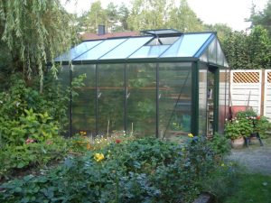The Differences Between a Greenhouse and a Cold Frame - Garden