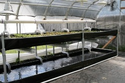 Growers Supply 2-Tier Hydroponics System