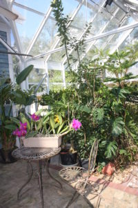 Greenhouse with Sitting Area