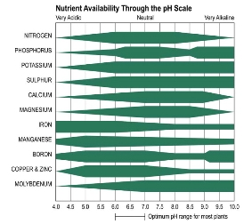 Figure 1 pH Nutrient Availability