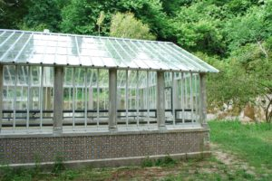 GlassGreenhouse