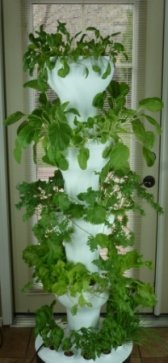 Foody Vertical Garden