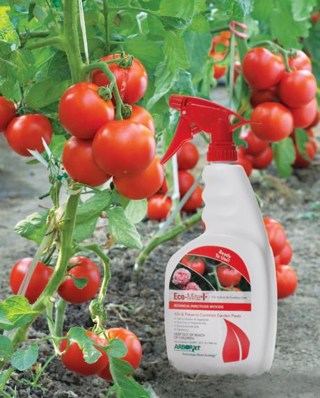 Arborjet Minimum Risk Pesticide