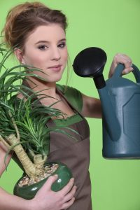 woman-watering-houseplant
