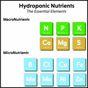 hydroponic-nutrients