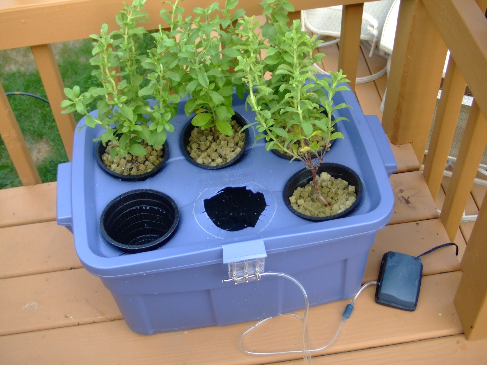 Do It Yourself Home Design: Do-It-Yourself Hydroponics