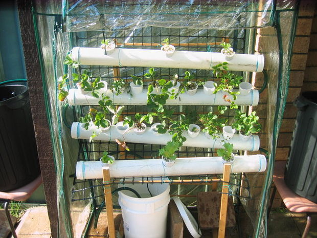 Homemade NFT Hydroponic System