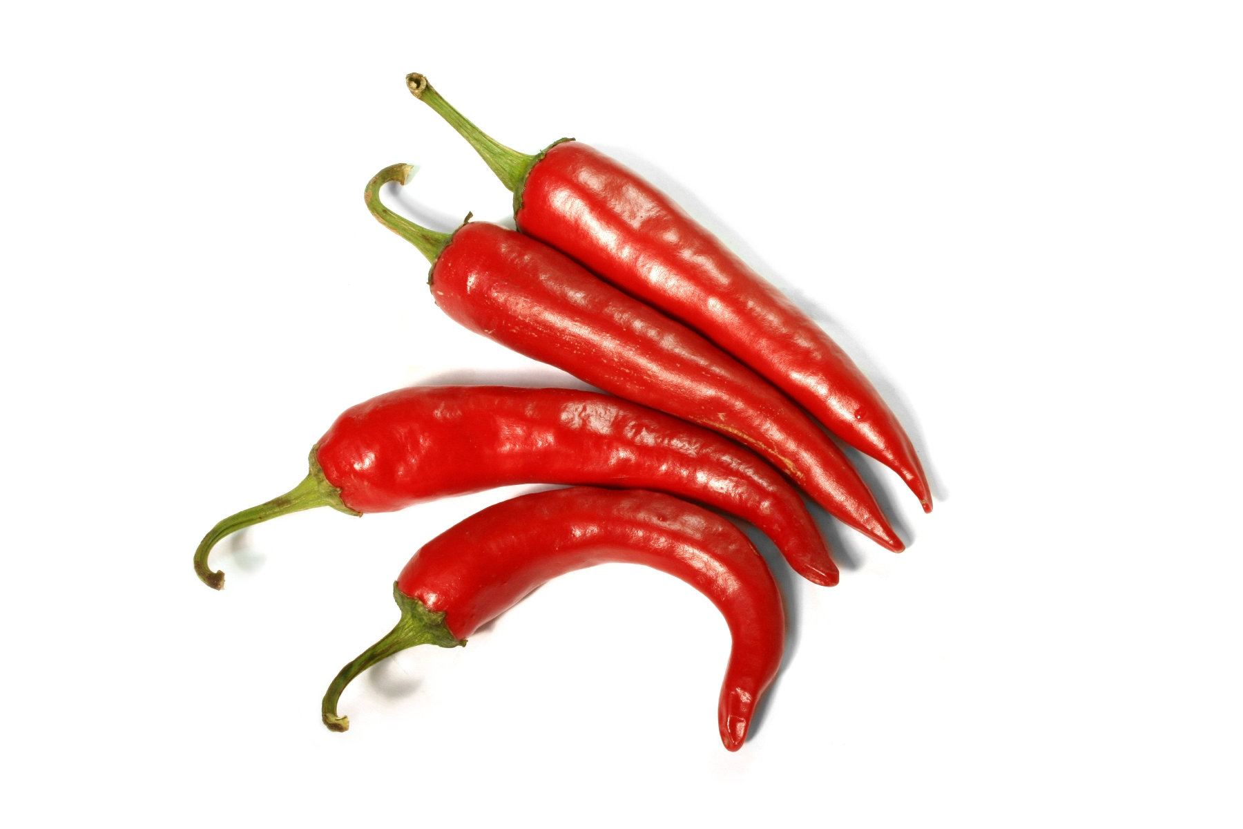 Blog Post >> Cayenne Pepper - Garden & Greenhouse