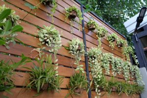 By Making An Indoor Vertical Garden In Your Room Will Add Fresh Blossom And Also A Splash Of Bright Colors